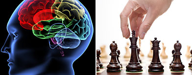 Los grandes jugadores de ajedrez usan partes ocultas del cerebro/ AP