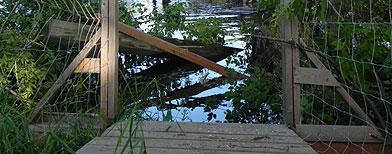 Manitoba bridge, The Canadian Press