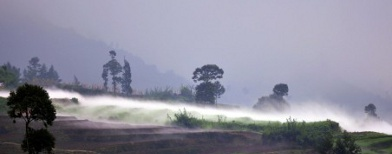 Asap mengandung gas karbondioksida CO2 menyelimuti permukaan kawah Timbang, 31 Mei 2011. ANTARA/Anis Efizudin