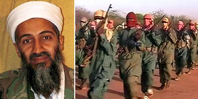 why muslims do not take bin laden as a hero essay