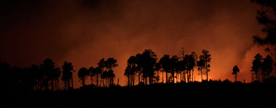 A wildfire burns near Los Alamos, N.M., Tuesday, June 28, 2011. (Jae C. Hong/AP Photo)