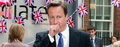 British Prime Minister David Cameron (WireImage)