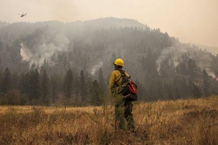 Manager of the Sinlahekin Wildlife Area Haug watches a helicopter fight the Okanogan Complex fire as it burns through the Sinlahekin Wildlife Area near Loomis