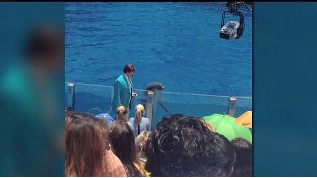 Anchorman Films In San Diego
