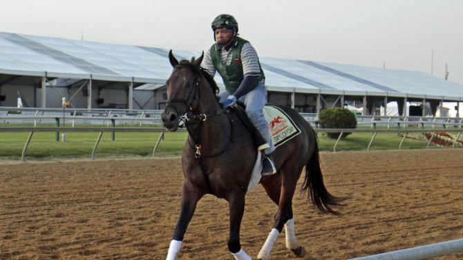 Exercise rider Peter Shelton trots Preakness Stakes hopeful Itsmylucky day the wrong way on the track at Pimlico Race Course Wednesday, May 15, 2013, in Baltimore. The Preakness Stakes horse race is Saturday. (AP Photo/Garry Jones)
