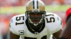 Report: Vilma willing to meet with Goodell