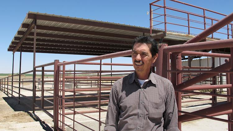Lawyer: Inspectors clear NM horse slaughterhouse