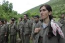 Kurdistan Workers Party (PKK) fighters stand at formation in northern Iraq