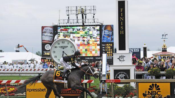 Oxbow Upsets Orb's Bid for a Triple Crown at the Preakness
