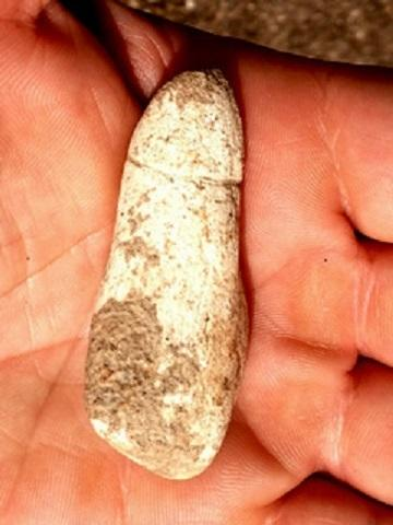 Stone Age Phallus Found in Israel