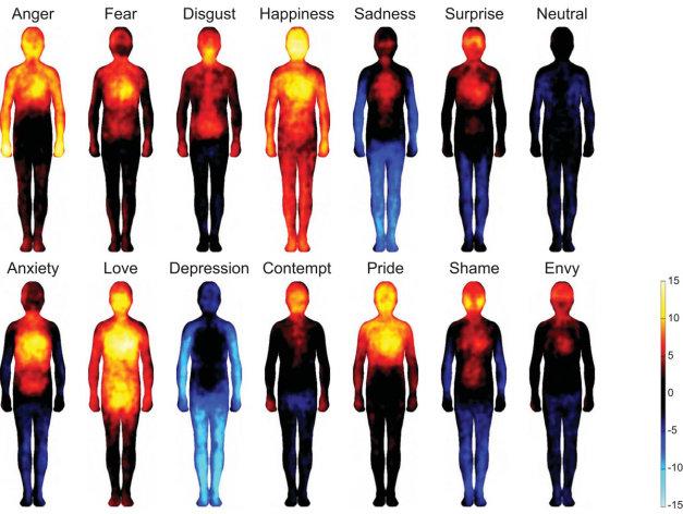 La mayoría de los participantes en el estudio coincidieron en señalar las mismas zonas del cuerpo para la misma emoción.