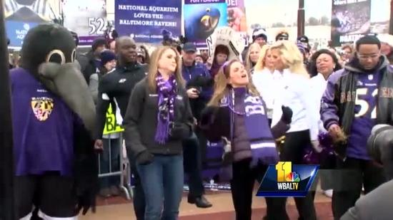 Ravens fans across the state hyped for Super Bowl