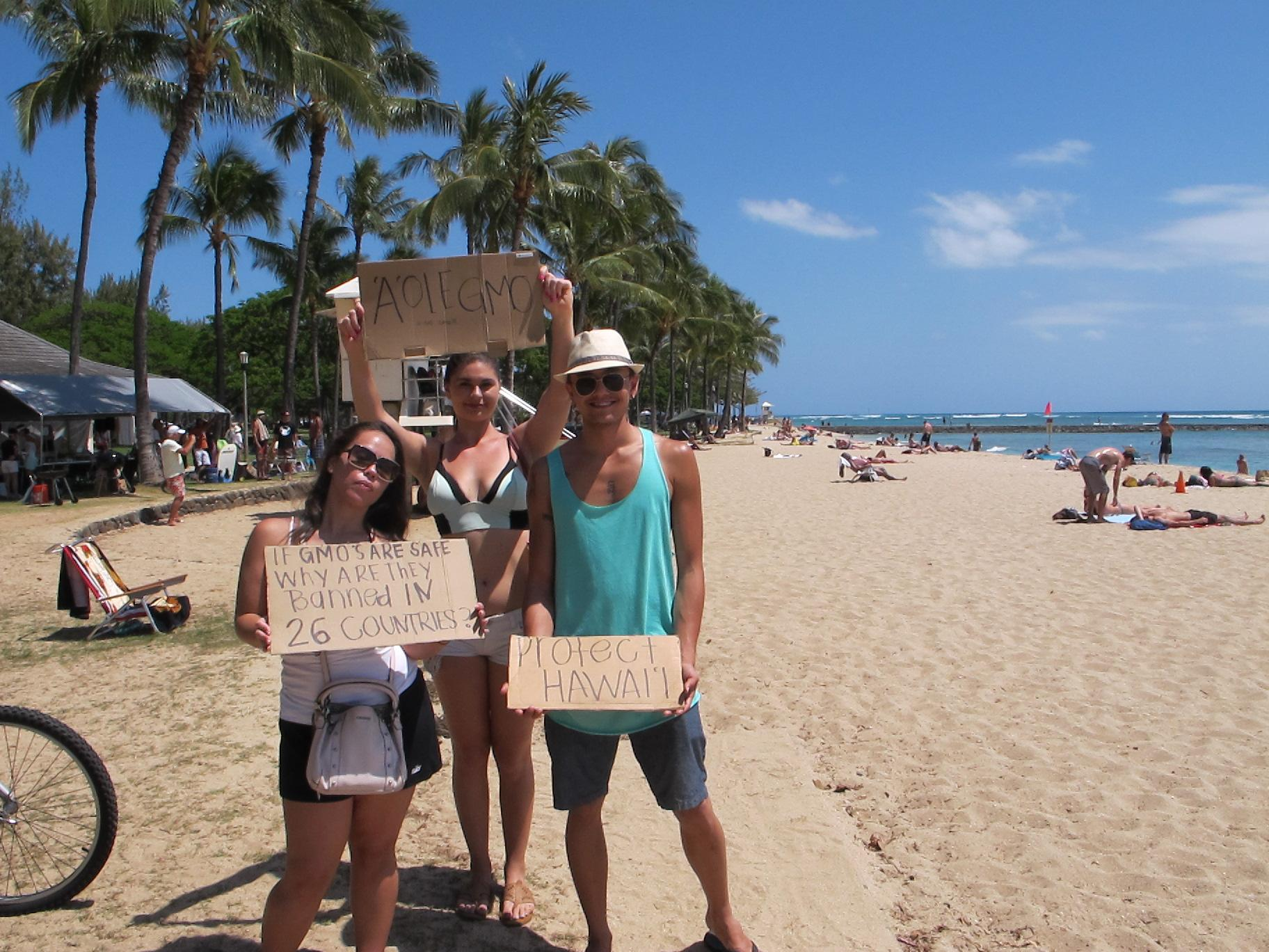 Hawaii groups plant coconut trees, protest against Monsanto