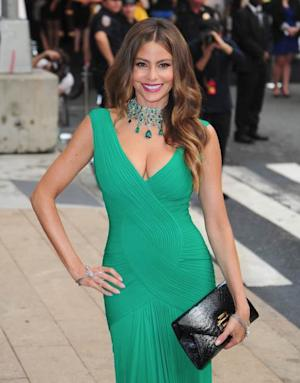 Sofia Vergara arrives at the 2013 CFDA Fashion Awards at Alice Tully Hall on June 3, 2013 in New York, New York -- Getty Premium