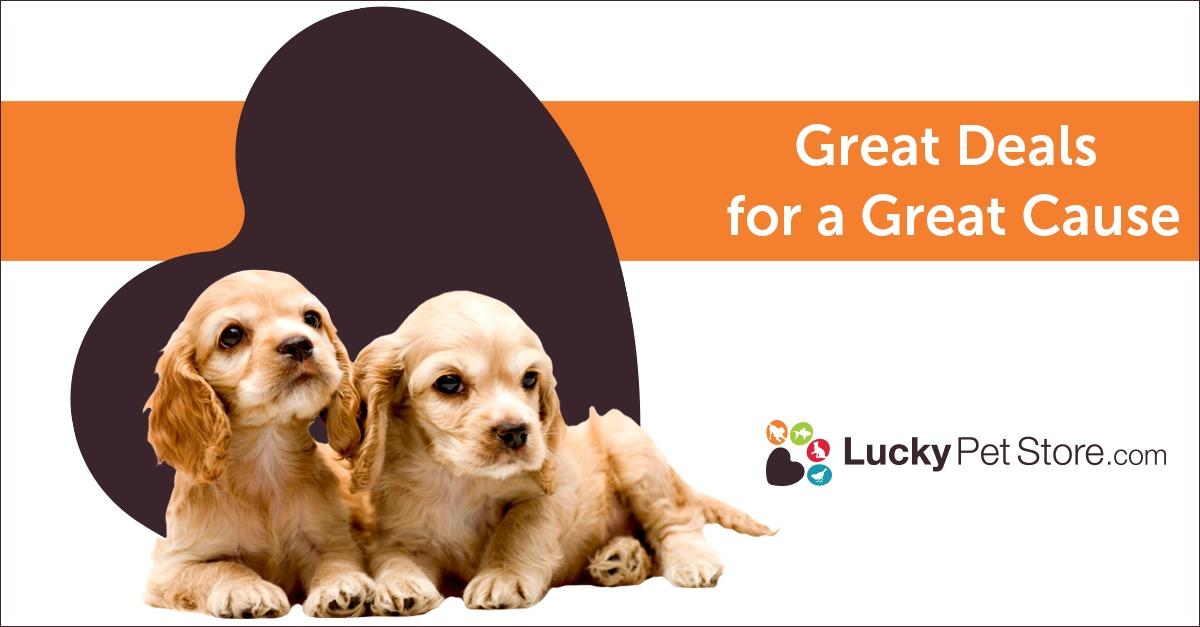 Looking for Pet Food? LuckyPetStore Can Help
