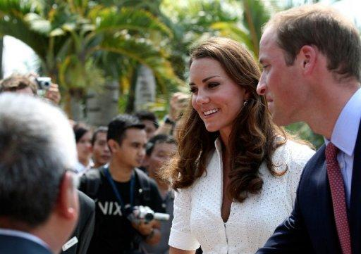 "The palace said the royal couple ""remain focused"" on their tour"