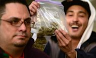 Legal Pot: Obama Not Going After Users