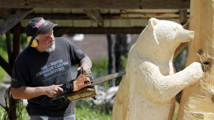 Mark Tyoe uses a chainsaw as he carves a bear sculpture from white pine on Thursday, May 29, 2014, in Salisbury, N.Y. The upstate New York artist's detailed renderings of curious bears, soaring eagles and other wildlife scenes have won him acclaim and earned him a living for many years. (AP Photo/Mike Groll)