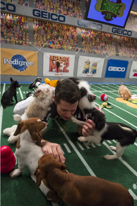 Puppy Bowl IX - Animal Pl&nbsp;&hellip;