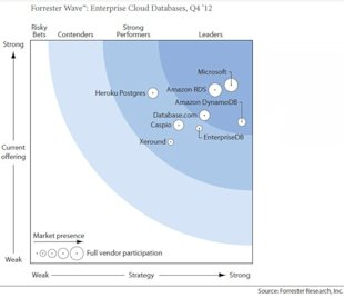 Roundup of Cloud Computing & Enterprise Software Market Estimates and Forecasts, 2013 image forrester wave