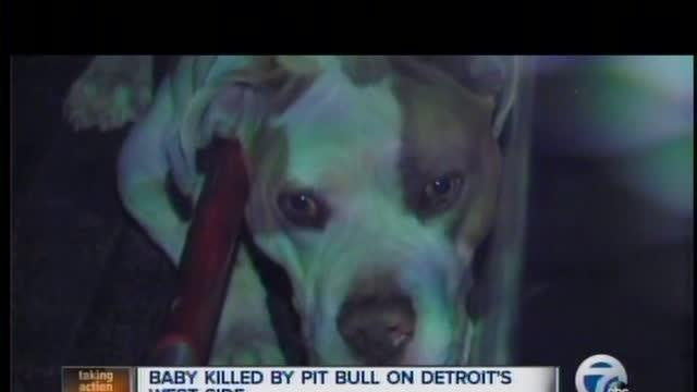 Baby attacked, killed by dog
