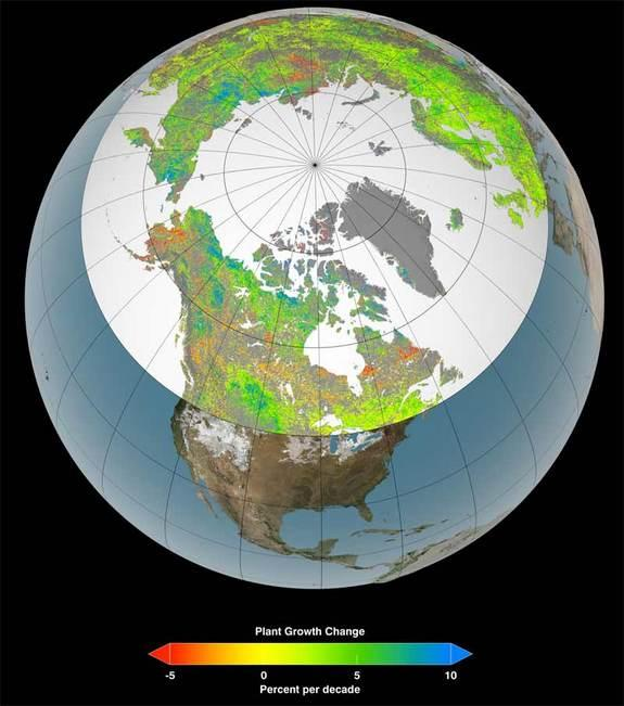 Arctic Gets Greener As Climate Warms: NASA Study