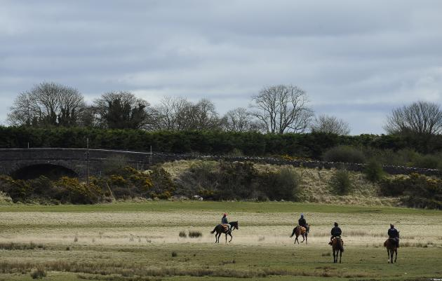 Curragh Gallops
