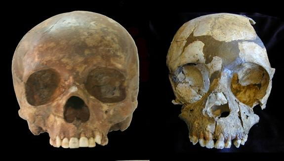 Fossil Teeth Suggest Humans Played Role in Neanderthal Extinction