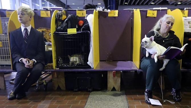 Handlers sit in the benching area with their dogs while they wait to compete during the 137th Westminster Kennel Club dog show, Monday, Feb. 11, 2013 in New York.  (AP Photo/Mary Altaffer)