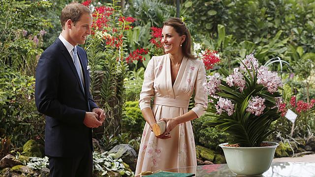 Prince William & Kate Middleton Expecting a Baby