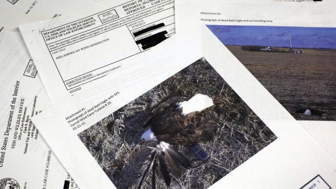Study: Wind farms killed 67 eagles in 5 years