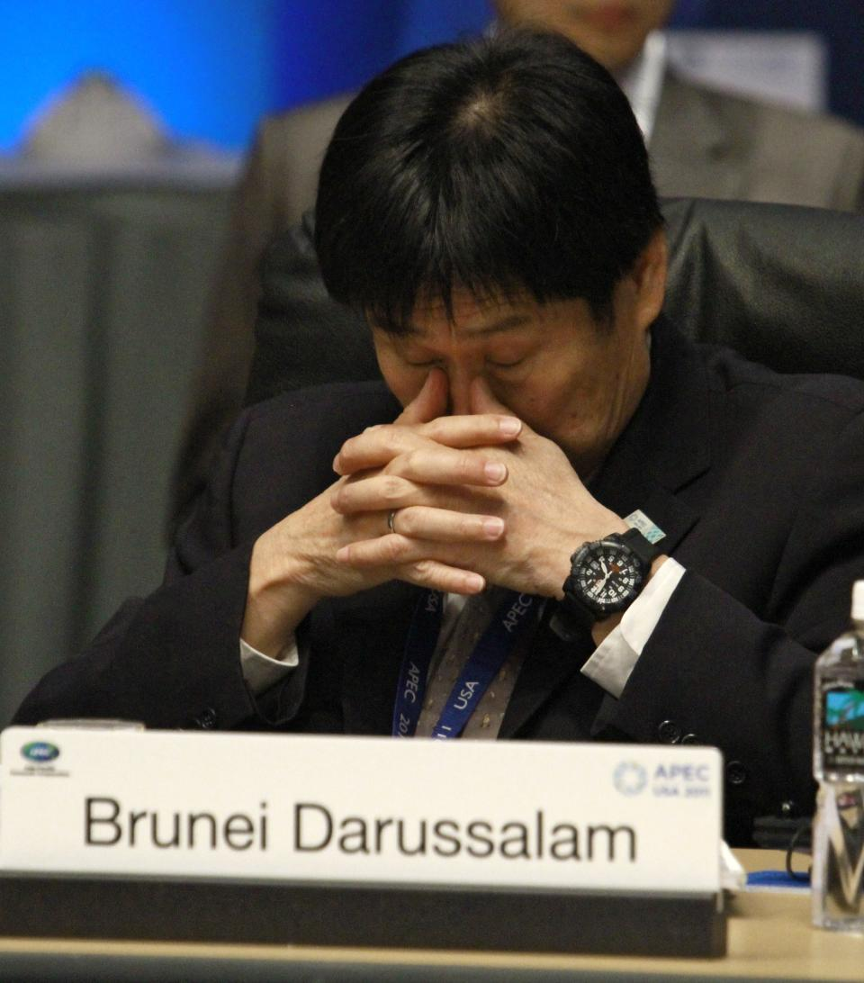 An unidentified representative of Brunei sits during an APEC ministerial meeting at the Asia-Pacific Economic Cooperation sum (AP Photo/J. David Ake)