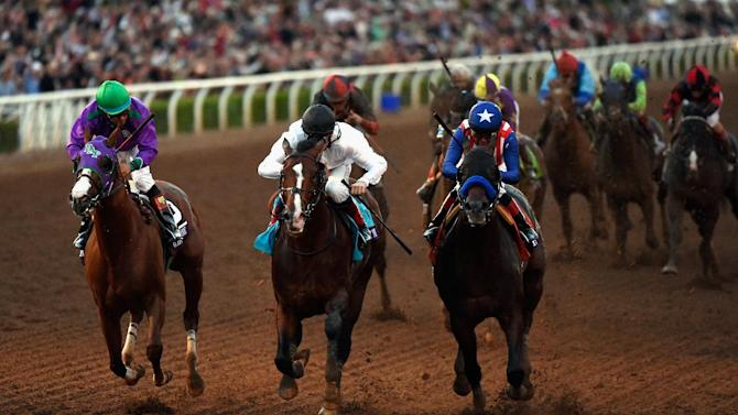 2014 Breeders' Cup Classic Contenders