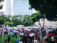 <p>An estimated crowd of 4,000 show up in support of the protest at Hong Lim Park.</p>