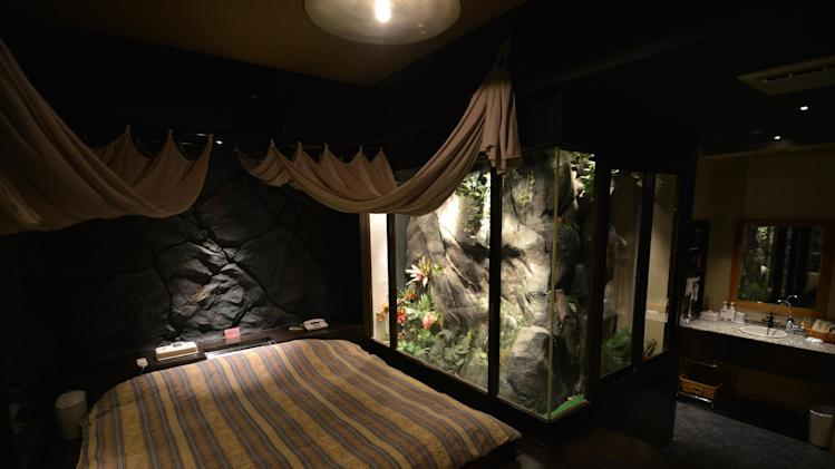 "A jungle style room of a love hotel called ""The Rock Kowloon Walled City"" in Iruma, suburban Tokyo"