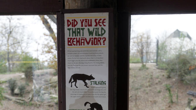 A sign to inform visitors about African Painted Dogs is seen in an observation area during a press tour that overlooks the enclosure where  a boy fell into the exhibit that was home to a pack of African painted dogs at the Pittsburgh Zoo and PPG Aquarium on Monday, Nov. 5, 2012, in Pittsburgh. Zoo officials said a young boy was killed after he fell into the exhibit and the dogs mauled him on Sunday, Nov. 4, 2012. (AP Photo/Keith Srakocic)