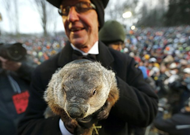 Groundhog Club co-handler Ron Ploucha holds the weather predicting groundhog, Punxsutawney Phil, after the club said Phil did not see his shadow and there will be an early spring, on Groundhog Day, Sa