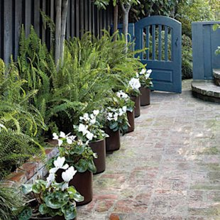 Enhance beds with potted plants