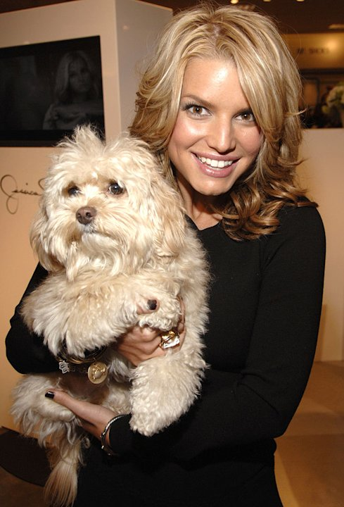 Jessica Simpson and dog Daisy