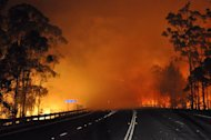 Photo taken on January 8, 2013 and provided by NSW Rural Fire Service shows trees burning along the Princes Highway in the Shoalhaven area in New South Wales. The Australian wildfires began earlier this month in Tasmania, where more than 100 homes were razed
