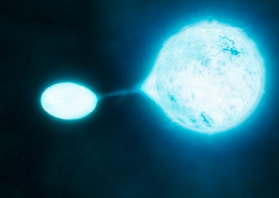 Most Massive Stars Live as Vampires in Close Stellar Pairs