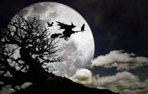 A Bewitching History: Why Witches Ride Broomsticks