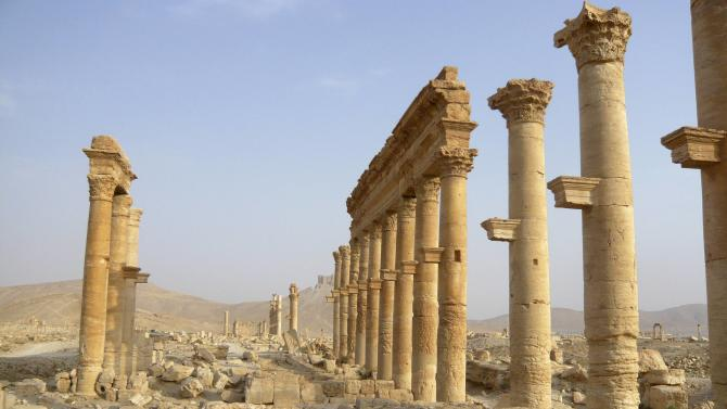 A view shows the colonnade in the historical city of Palmyra