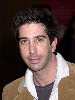 David Schwimmer at the Hollywood premiere for The Dancer Upstairs