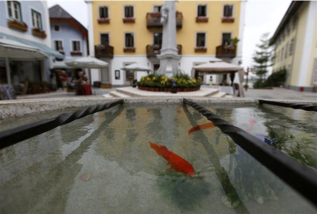 Goldfish are seen at the Chinese replica of Austria's UNESCO heritage site, Hallstatt village in China's southern city of Huizhou in Guangdong province