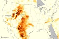 This map, created using data from a NASA satellite, shows particulate matter released by the wildfires throughout the United States. Reddish-brown areas have the highest levels of particulates.