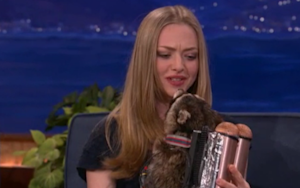 Amanda Seyfried's Raccoon; James Bond in His Natural Habitat