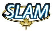 SLAM Announces Change of Auditor