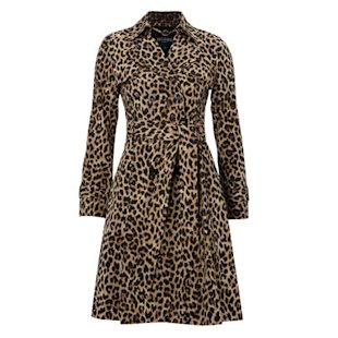 Hobbs Animal Print Trench Coat: What to Wear: Weekend: Trenches: Fashion