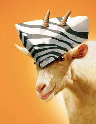 Franny the goat (voiced by Whoopi Goldberg ) in Warner Bros' Racing Stripes